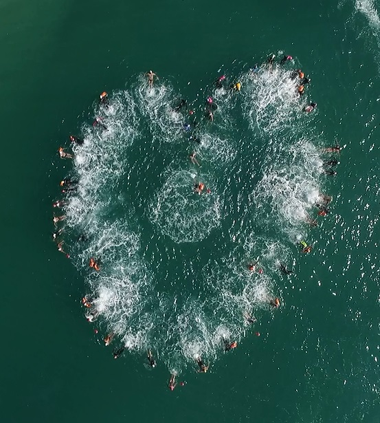 Heart Swimmers
